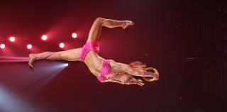 TOTEM : Cirque du Soleil
