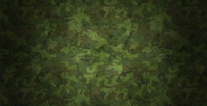 boyackmilitary_camouflageTOP