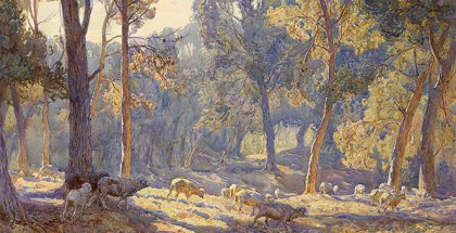 Hans HEYSEN, 'Midsummer morning' 1908, watercolour over pencil 56.4 x 78.7 cm (sheet). National Gallery of Victoria, Melbourne Felton Bequest, 1908.