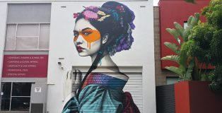 FRONT COVER: Artist: Fin DAC Photo: Colourourcity. Little Rundle Street, Kent Town, Adelaide, Australia. Reproduced with permission from Street Art, © 2017 Lonely Planet