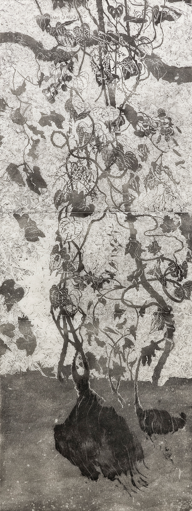 John Wolseley, 'Ganguri vine and yam' 2015, linocut and woodcut, edition of 40.