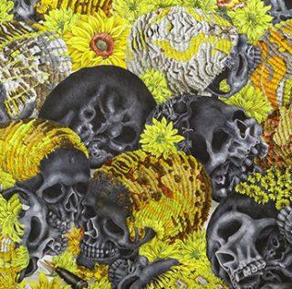 Romancing the Skull